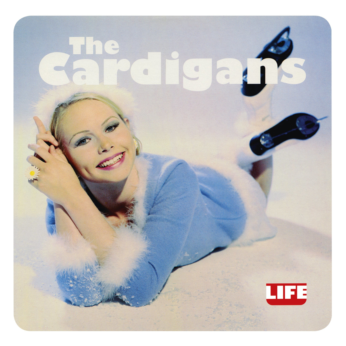 the cardigans life
